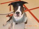 monti-hates-graduation